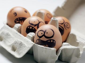 Eier als wertvolle Proteinquelle
